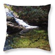Pristine Stream Pool Throw Pillow