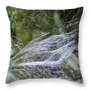 Private Galaxy Throw Pillow