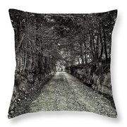 Private Road B Throw Pillow
