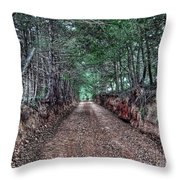 Private Road Throw Pillow