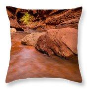 Professor Creek Canyon 2 Throw Pillow