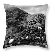 Profile Hawaiian Sea Turtle Bw Throw Pillow
