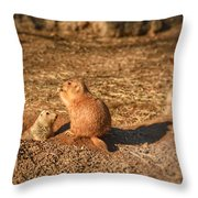 Profile In Light I Throw Pillow