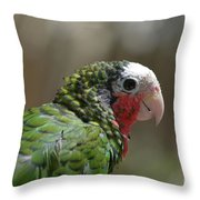 Profile Of A Conure Parrot Up Close Throw Pillow