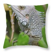 Profile Of A Gray Iguana In The Top Of A Bush Throw Pillow