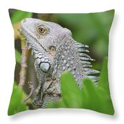 Profile Of A Gray Iguana Perched In A Bush Throw Pillow