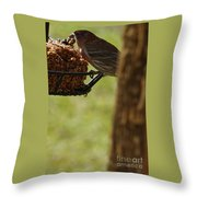 Profile Of A Male House Finch Throw Pillow