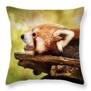 Profile Of A Red Panda Throw Pillow