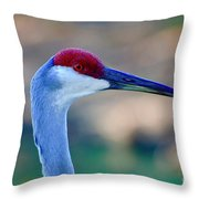 Profile Of A Sandhill Throw Pillow