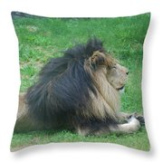 Profile Of A Sleeping Lion In Grass Throw Pillow