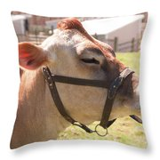 Profile Of Brown Cow Throw Pillow