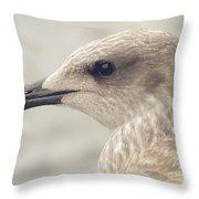 Profile Of Juvenile Seagull Throw Pillow