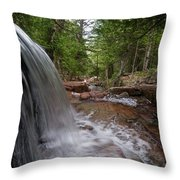 Profile Of The Falls Throw Pillow