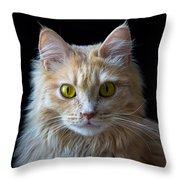 Profile Photo Throw Pillow