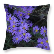 Profusion Of Purple Throw Pillow