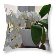 Profusion Of White Orchid Flowers Throw Pillow