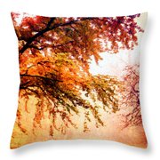 Promise Of A Brighter Future Throw Pillow