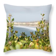Promontory  Throw Pillow