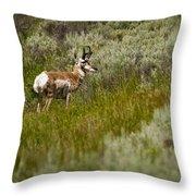 Prong Horn Throw Pillow