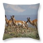 Pronghorn Antelope Running Throw Pillow