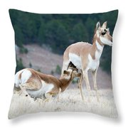 Pronghorn Feeding Throw Pillow