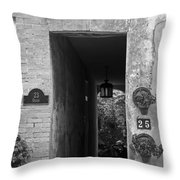Property Lines Throw Pillow