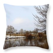 Prosser Winter - Brown And Burgundy Throw Pillow