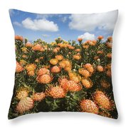 Protea Blossoms Throw Pillow