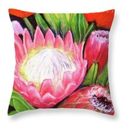 Protea Flowers #240 Throw Pillow