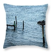 Protected Osprey Nest Throw Pillow