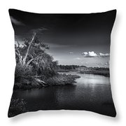 Protected Wetland Throw Pillow