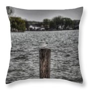 Protecting His Interests Throw Pillow