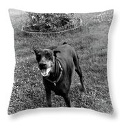 Protecting My Yard Not Throw Pillow