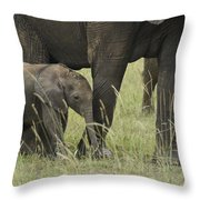 Protecting The Little One Throw Pillow