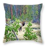 Protective Elk Throw Pillow