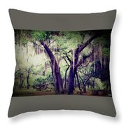 Protector Of Souls Throw Pillow
