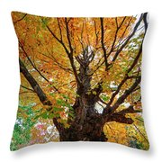 Proud Maine Tree In The Fall Throw Pillow