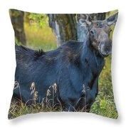 Proud Mama Moose Throw Pillow