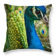 Preened And Proud Throw Pillow
