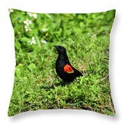 Proud Red-wing Throw Pillow