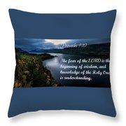 Proverbs114 Throw Pillow