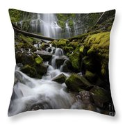 Proxy Falls Oregon 5 Throw Pillow