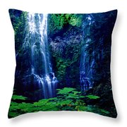 Proxy Waterfalls Throw Pillow