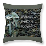 Psalm 103 Temporary And Eternal Throw Pillow