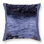 Psl Water Throw Pillow