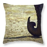 Pssst... C'mere Throw Pillow