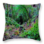 Psychedelic Fern Gully On Mt Tamalpais Throw Pillow