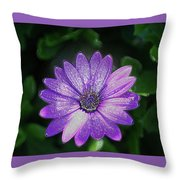 Psychedelic Purple Petals  Throw Pillow