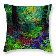 Psychedelicosmic Creek On Mt Tamalpais Throw Pillow