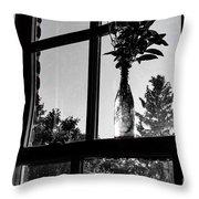 Pt 2 Flowers On A Windowsill Throw Pillow